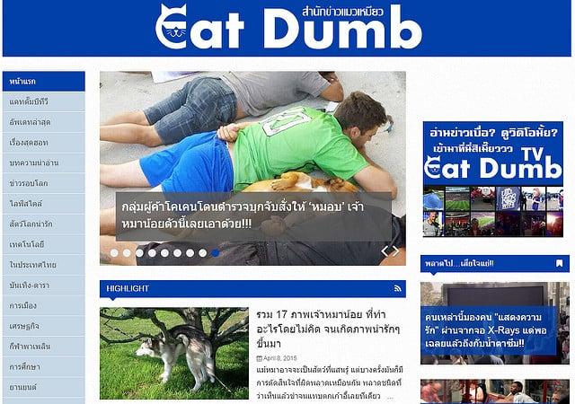 """alt=""""th-catdumb"""""""