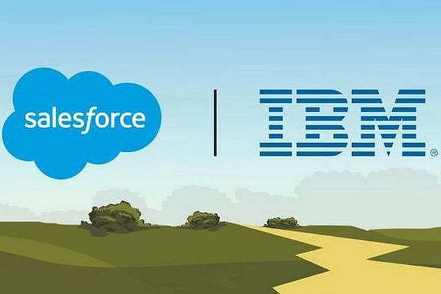 """alt=""""Salesforce.IBM.landscape"""""""