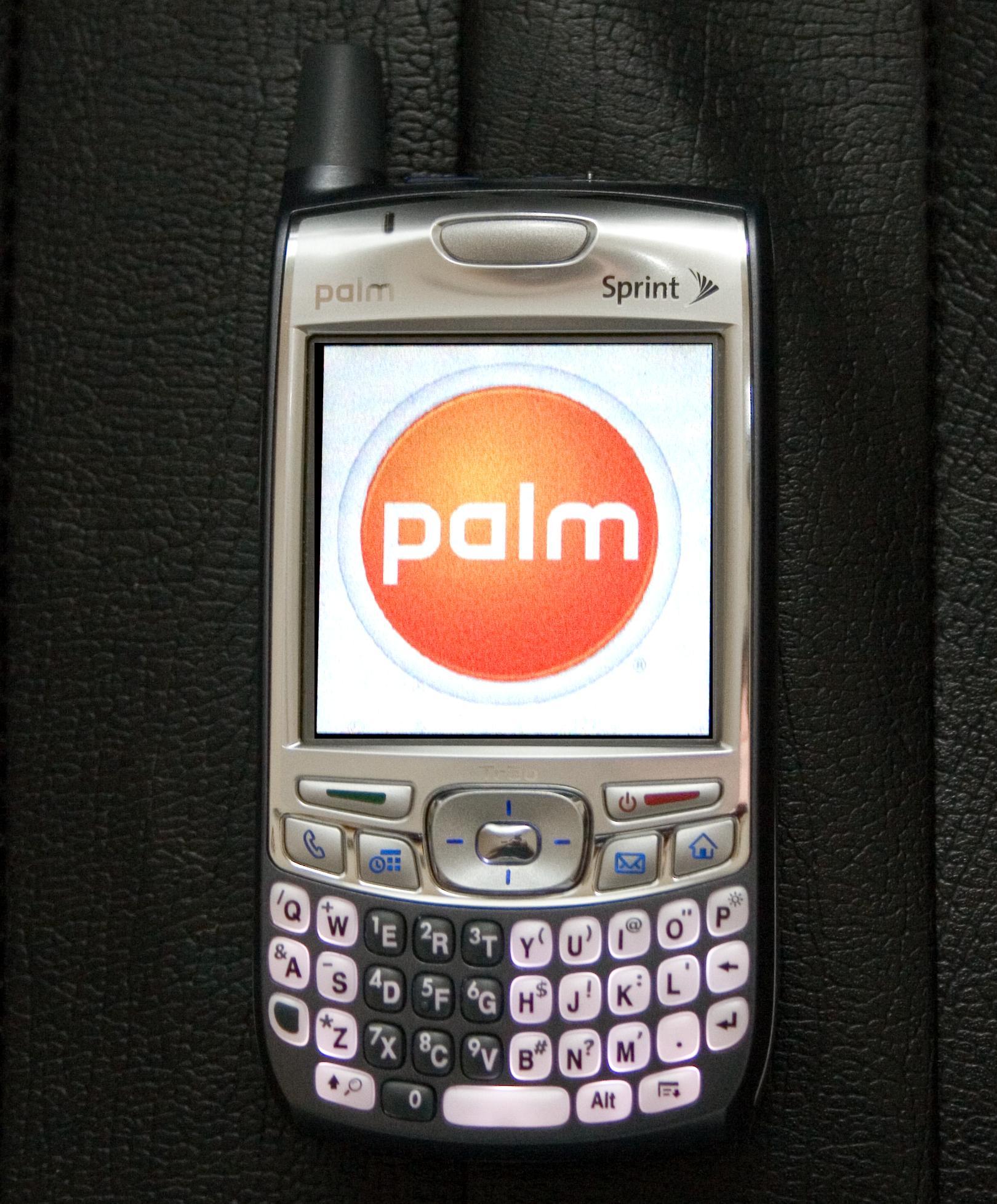 "alt=""Palm"""