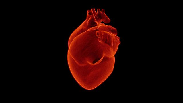 """alt=""""heart-1767552_1280"""""""